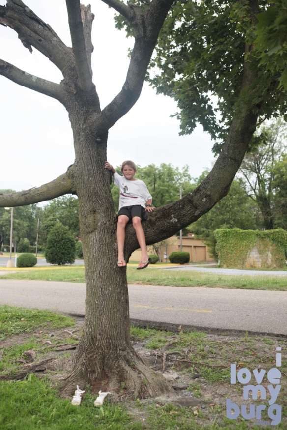 kid in tree