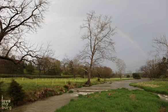 HEF Gala rainbow