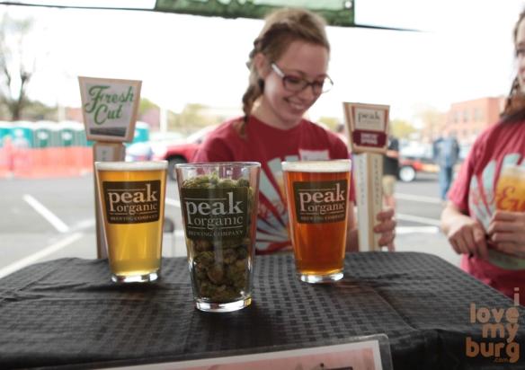 rocktown beer fest peak